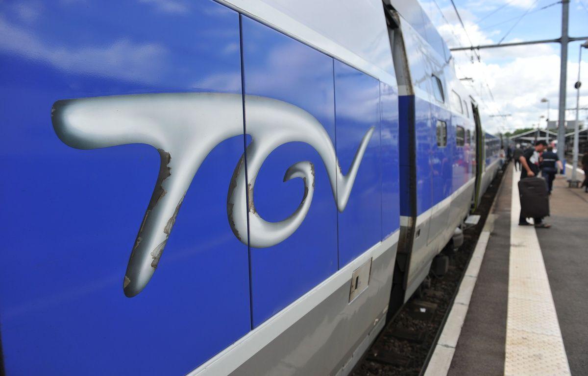 Illustration Transports Vie quotidienne TGV. Illsutration trace de la nouvelle LGV Sud Ouest. Train a Grande Vitese en gare de Toulouse Matabiau. – A. GELEBART / 20 MINUTES