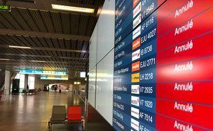 Le 13 mai, dans le hall d'arrivée déserté de l'aéroport de Toulouse-Blagnac.