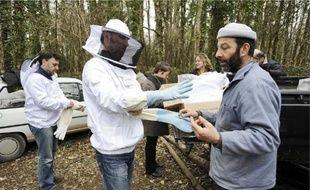 Le «rucher-école» des apiculteurs de Loire-Atlantique se trouve à Saint-Herblain et accueille de nombreux ateliers pratiques.