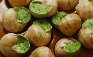 Escargots, illustration.
