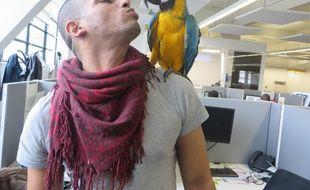 A Lyon, les salariés de SantéVet sont autorisés à venir travailler avec leurs animaux de compagnie. Ici Yacine et sa femelle perroquet, Ivy.