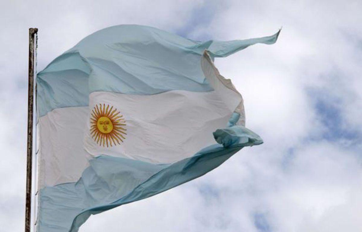 Illustration: le drapeau argentin. – Richard Sowersby/REX/REX/SIPA
