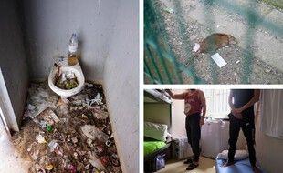 Les toilettes hommes de la cour de promenade, un rat dans cette même cour et une cellule suroccupée de la maison d'arrêt de Seysses.
