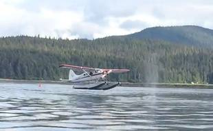 Capture d'écran d'une vidéo sur laquelle un hydravion remet les gaz au moment d'amerrir sur une baleine.