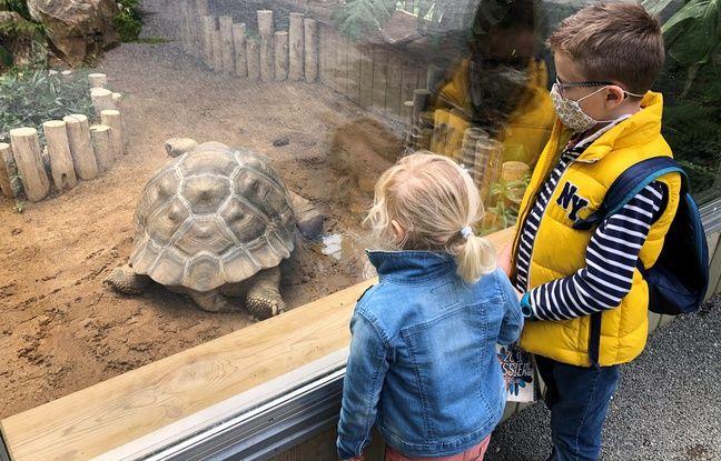 Le zoo de la Boissière-du-doré, le 16 mai 2020.