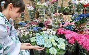 Un jeune couple de New York a intenté un procès à un fleuriste, qui se voit réclamer 400.000 dollars pour avoir raté la couleur de bouquets d'hortensias commandé pour la noce en août dernier, rapporte la presse mardi.