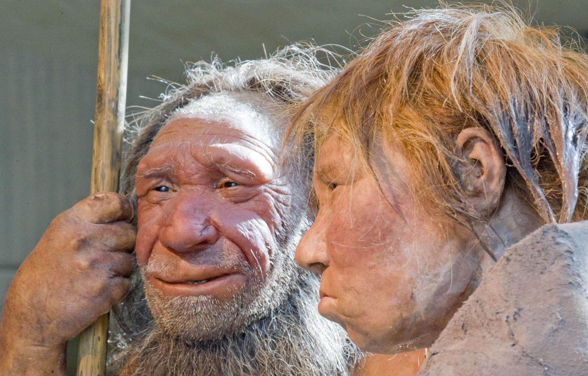 Reconstitution d'hommes de Néanderthal au Neanderthal museum de Mettmann (Allemagne), le 20 mars 2009. – Martin Meissner/AP/SIPA