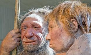 Reconstitution d'hommes de Néanderthal au Neanderthal museum de Mettmann (Allemagne), le 20 mars 2009.