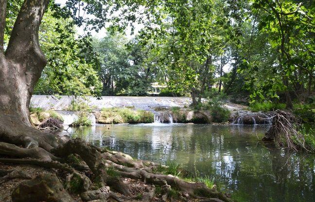 La petite cascade du Lez, à Montpellier.