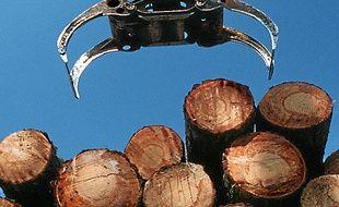 La cellulose provient du bois.