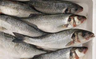 L'Union européenne subventionne chaque année le secteur de la pêche, dont les activités ont fortement contribué à l'épuisement des stocks halieutiques, à l'aide de milliards d'euros versés par les contribuables européens, a affirmé vendredi l'alliance Ocean2012.