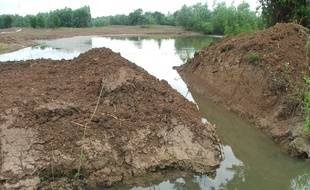Le collectif estime que le projet endommage la zone humide, classée Natura 2000.