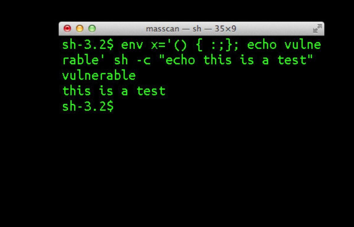 L'interpréteur de commandes Bash, sous Linux. – DR