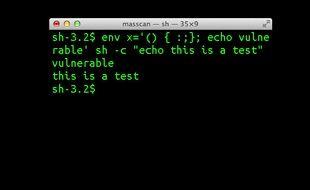 L'interpréteur de commandes Bash, sous Linux.