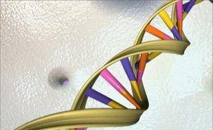 Des chercheurs américains ont créé des techniques ayant permis de séquencer et de comparer avec un degré de précision inégalé les génomes de 179 individus représentant trois continents ce qui marque une première, selon leurs travaux publiés mercredi.
