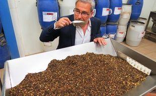 François Cambell, directeur de La Route des Comptoirs, sélectionne ses thés en Asie, Afrique ou Amérique du sud.