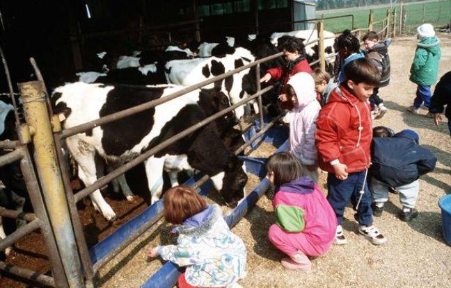 Groupe d'enfants visitant une ferme pedagogique dans la Sarthe.