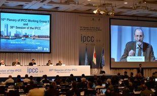Le Groupe d'experts intergouvernemental sur l'évolution du climat (Giec) réuni le 25 mars 2014 à Yokohama