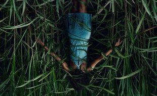 «Dans les hautes herbes», une adaptation de Stephen King, à retrouver sur Netflix pour Halloween