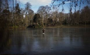 Le lac Daumesnil, futur lieu de baignade (quand il n'est pas gelé comme cet hiver)