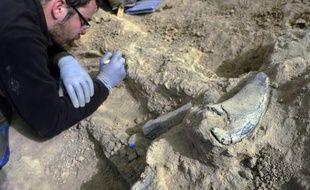 Sur un terrain vague de Calzada de Oropesa, dans le centre de l'Espagne, les archéologues viennent d'exhumer les restes de sept villageois fusillés en novembre 1936 par les franquistes, quatre mois après le début de la Guerre civile (1936-39).