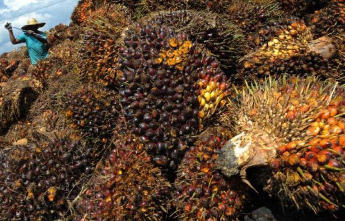 Une usine d'huile de palme près de Kuala Lumpur. – Saeed Khan AFP