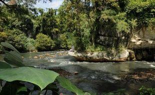 A l'horizon, des dizaines de rizières d'un vert éclatant. Dans le ciel, une nuée de cerfs-volants, et tout proches, des rires d'enfants. A première vue, le village de Sukamaju a tous les charmes de la campagne indonésienne.