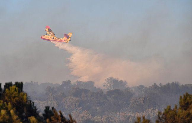 Incendie dans l'Aude: Près de 200 hectares de pinède brûlés, plusieurs habitants évacués