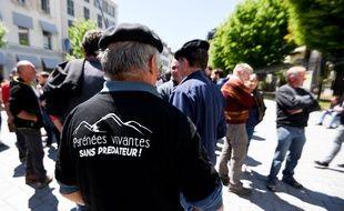 Une centaine de maires de l'Ariège ont manifesté à Toulouse pour exiger le retrait de l'ours.