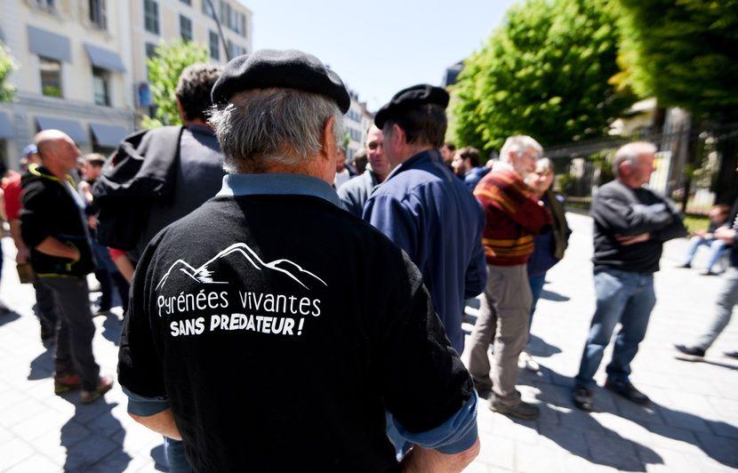 Toulouse: Une centaine de maires manifestent pour réclamer le retrait de l'ours des Pyrénées ariégeoises
