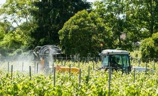 Application de pesticides dans des vignes bordelaises