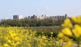 La métropole rennaise veut conserver sa ceinture verte.