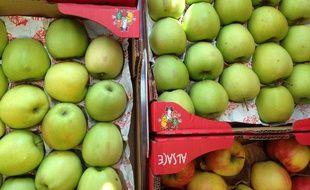 150 caisses de pommes ont été vendues à un seul client dans un supermarché de La Havane, à Cuba.