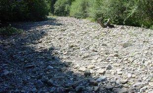 Le département du Var est régulièrement touché par la sécheresse.