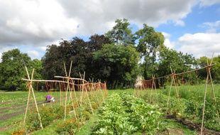 Le bois de Vincennes accueille déjà depuis 2014 une petite ferme où les Franciliens peuvent cultiver leurs légumes et fruits ou venir en acheter.