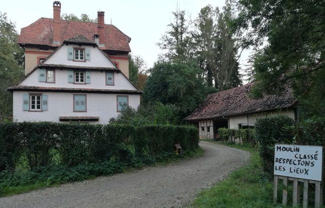 Le site de la Zad de Kolbsheim contre le projet autoroutier du GCO se trouve dans la clairière d'une forêt où se trouve un moulin.