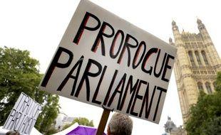Les manifestants pro et anti Brexit font le siège du parlement de Londres. (archives)