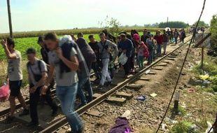Les derniers migrants passent la frontière Serbo-hongroise
