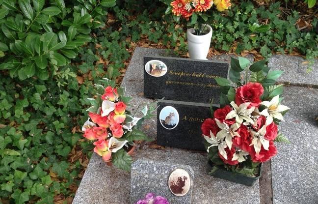 Les propriétaires qui ont leurs animaux enterrés dans le cimetière peuvent venir quand bon leur semble pour fleurir les tombes.