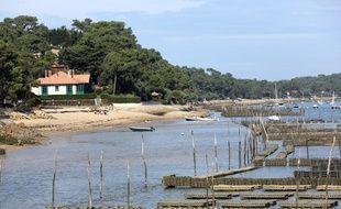 La surmortalité des huîtres depuis 2008 a alerté le Ceser sur la qualité des eaux du littoral.