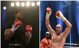 Anthony Joshua et Tyson Fury ont tous les deux fait tomber Wladimir Klitschko