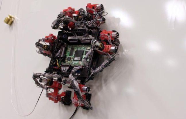 Le robot-gecko Abigaille.