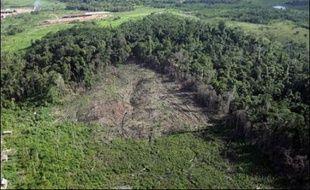 Du Mexique à l'Amazonie, la savane gagne sur la forêt en Amérique latine et la désertification s'étend. Sous l'effet des sécheresses à venir, la salinisation et la désertification des terres agricoles menacent la sécurité alimentaire du continent, selon le rapport des experts sur les impacts du changement climatique publié vendredi à Bruxelles.