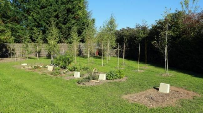 Premier «cimetière naturel» en France pour un repos éternel «écolo et pas cher»