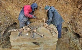 """Le squelette d'un cheval préhistorique, dans """"un état de conservation parfait"""" malgré ses plus de 100.000 ans, a été mis au jour par un agriculteur dans le Puy-de-Dôme, a indiqué mardi la Direction régionale des affaires culturelles (Drac)."""