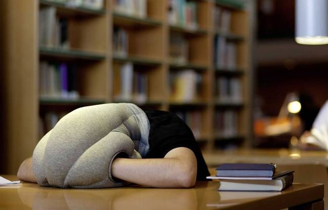 Faire la sieste est bon pour la santé de votre coeur, selon une étude