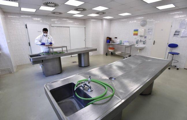 648x415 une salle pour des autopsies dans un hopital illustration