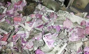 Les rats ont fait un festin de billets de 500 et de 2000 roupies.