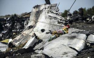 Des fleurs apportées posées sur des débris du MH17, le 26 juillet 2014 à Grabove, dans la région de Donetsk, en Ukraine