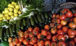 """La consommation des Français en fruits et légumes se rapproche des recommandations nationales, mais il reste des progrès à faire, notamment chez les enfants qui ne mangent pas assez de ces aliments """"santé"""" et boivent encore trop de boissons sucrées."""